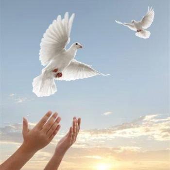 Ling Chi Healing Art™
